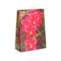 """Пакет пластмассовый подарочный """"Орхидея"""" (17х13х5 см; арт. 10577025)"""