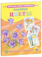 Садовые цветы. 16 обучающих карточек