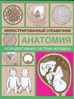 Анатомия. Иллюстрированный справочник. Репродуктивная система человека