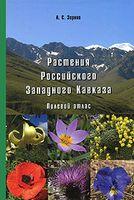 Растения Российского Западного Кавказа. Полевой атлас
