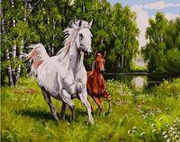 """Картина по номерам """"Дикие лошади"""" (400х500 мм)"""