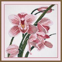 """Вышивка крестом """"Зов орхидеи"""""""