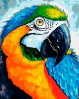 """Картина по номерам """"Разноцветный попугай"""" (400х500 мм)"""