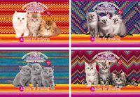 """Альбом для рисования """"Три котенка"""" (A4, 32 листа)"""