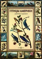 Птицы Америки (подарочное издание)