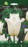 """Тюльпан триумф многоцветковый """"Эграсс Уайт"""""""