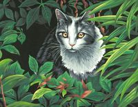 "Картина по номерам ""Кот-исследователь"" (280х360 мм; арт.  91435-73-DMS)"