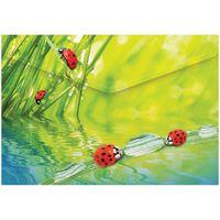 """Папка-конверт """"Ladybird"""" (А4)"""
