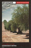 Оливковая ферма