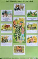 Как лесник заботится о лесе. Плакат