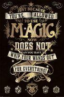 """Постер """"Harry Potter. Magic"""""""