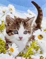 "Картина по номерам ""Котёнок в ромашковом поле"" (400х500 мм)"