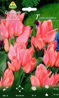 "Тюльпан Грейга многоцветковый ""Торонто"""