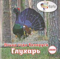 Птица года Беларуси. Глухарь