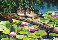 "Картина по номерам ""Пруд с лилиями"" (360х510 мм; арт. DMS-73-91467)"