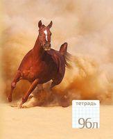 """Тетрадь общая в клетку """"Лошадь"""" (96 листов)"""