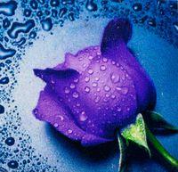 """Алмазная вышивка-мозаика """"Сиреневая Роза"""" (220х240 мм)"""