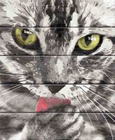 "Картина по номерам ""Кот"" (400х500 мм)"