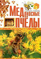 Медоносные пчелы. Содержание и разведение