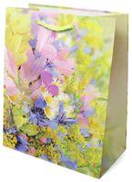 Пакет бумажный подарочный (18x22x10 см; арт. 2139 M)