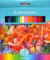 """Цветные карандаши """"Аквамариновое настроение"""" в картонной коробке (24 цвета)"""