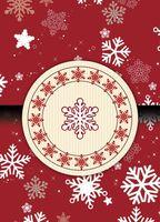 Пакет бумажный подарочный (45х32х10 см; арт. KOX12013)