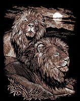 """Гравюра """"Величественные львы"""" (медь)"""