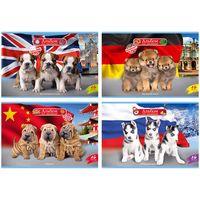 """Альбом для рисования """"World of Dogs"""" (А4; 16 листов; в ассортименте)"""