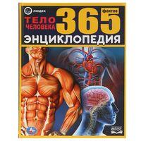 Энциклопедия 365 фактов. Тело человека