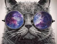 """Алмазная вышивка-мозаика """"Кот в очках"""" (500х400 мм)"""
