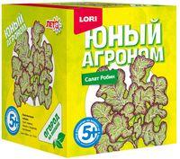 """Набор для выращивания растений """"Салат Робин"""""""