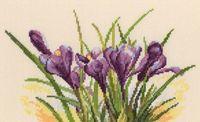 """Вышивка крестом """"Весенние крокусы"""" (250х155 мм)"""