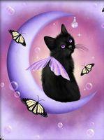 "Алмазная вышивка-мозаика ""Чёрный кот"" (400х500 мм)"