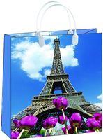 "Пакет пластиковый подарочный ""Paris"" (40х32х10 см; арт. BUL004)"