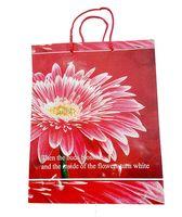 Пакет бумажный подарочный (33х26х14 см; арт. KOL12002)