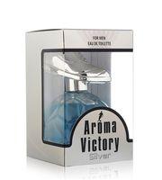 "Туалетная вода для мужчин ""Aroma Victory Silver"" (100 мл)"