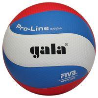 """Мяч волейбольный Gala """"Pro-Line 10 FIVB"""" №5"""
