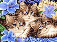 """Картина по номерам """"Котята в цветах"""" (300х400 мм; арт. PC3040059)"""