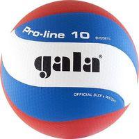 """Мяч волейбольный Gala """"Pro-Line 10"""" №5"""