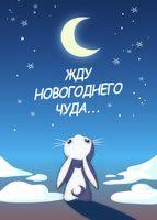 """Открытка """"Жду новогоднего чуда"""""""