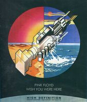 Pink Floyd: Wish You Were Here (Blu-Ray)