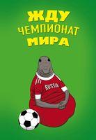 "Блокнот в линейку ""Жду Чемпионат Мира"" (А5)"