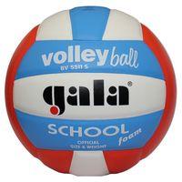 """Мяч волейбольный Gala """"School Foam"""" №5"""
