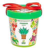 """Набор для выращивания растений """"Руккола пряная"""""""