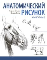 Анатомический рисунок. Животные