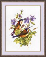 "Вышивка крестом ""Птички-невелички. Колибри"" (190х240 мм)"
