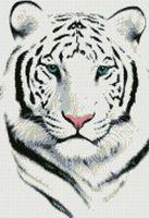 "Алмазная вышивка-мозаика ""Белый тигр"" (430x300 мм)"