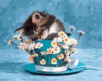 "Картина по номерам ""Котик и ромашки"" (400х500 мм)"