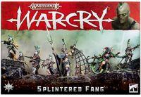 Warhammer Age of Sigmar. Warcry. Splintered Fang (111-13)