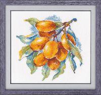 """Вышивка крестом """"Янтарная ягода"""" (150х150 мм)"""